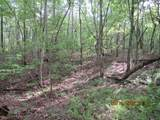 42 AC Coon Hollow Rd - Photo 11