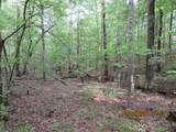42 AC Coon Hollow Rd - Photo 12