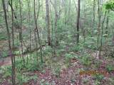 42 AC Coon Hollow Rd - Photo 13