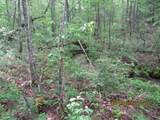 42 AC Coon Hollow Rd - Photo 14