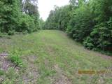 42 AC Coon Hollow Rd - Photo 15