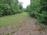 42 AC Coon Hollow Rd - Photo 17