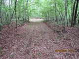 42 AC Coon Hollow Rd - Photo 20