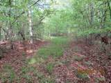 42 AC Coon Hollow Rd - Photo 4