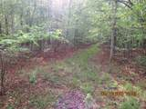42 AC Coon Hollow Rd - Photo 5