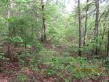42 AC Coon Hollow Rd - Photo 6