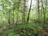 42 AC Coon Hollow Rd - Photo 8