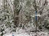 Laurel Ct 36, 37 &Alpine Dr 38 - Photo 16
