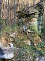 Rock Creek Lane - Photo 10