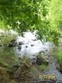 10173 Mulberry Gap Rd - Photo 18