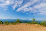 Mountain Ash Way - Photo 3