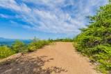 Mountain Ash Way - Photo 5