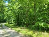 5.17 Acr Bluegreen Way - Photo 1