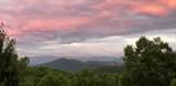2010 Bluff Mountain Rd - Photo 6