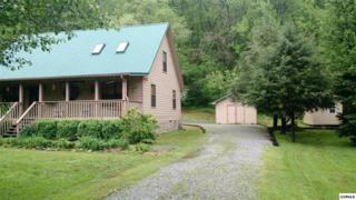 3581 Mountain Creek Way, Cosby, TN 37722 (#1001299) :: SMOKY's Real Estate LLC