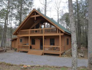 352 Warrior Ridge Way, Cosby, TN 37722 (#1001443) :: SMOKY's Real Estate LLC