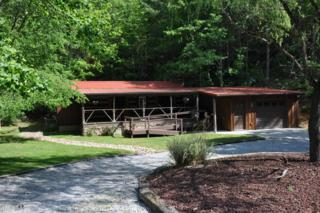 612 Stonegate Way, Townsend, TN 37882 (#1002568) :: SMOKY's Real Estate LLC