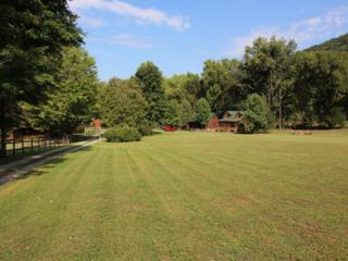 337 Stables Drive, Townsend, TN 37882 (#1002588) :: SMOKY's Real Estate LLC