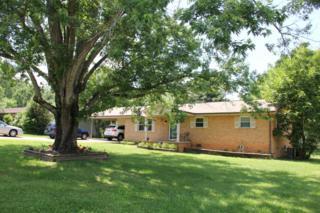 843 Walker Ave, Seymour, TN 37865 (#1002848) :: SMOKY's Real Estate LLC