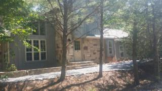 199 Cold Springs Trace, Townsend, TN 37882 (#1002882) :: SMOKY's Real Estate LLC