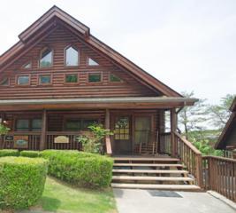 737 Golf View Blvd, Pigeon Forge, TN 37863 (#1003398) :: SMOKY's Real Estate LLC