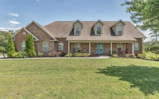 5708 Sawyers Green Tr, Seymour, TN 37865 (#1003493) :: SMOKY's Real Estate LLC