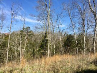 Lots 7, 8 Megan Ridge Drive, Sevierville, TN 37876 (#1003554) :: SMOKY's Real Estate LLC