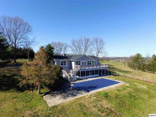 1938 Mccleary Rd, Sevierville, TN 37876 (#1003563) :: SMOKY's Real Estate LLC