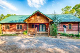 3725 Island View Rd, Sevierville, TN 37876 (#1003607) :: SMOKY's Real Estate LLC