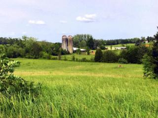 Savannah Lane, Madisonville, TN 37354 (#1003626) :: SMOKY's Real Estate LLC