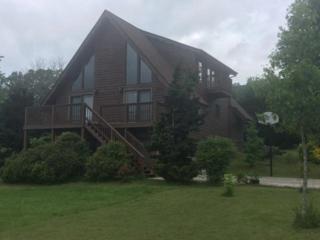 217 Baker Circle, Maynardville, TN 37807 (#1003627) :: SMOKY's Real Estate LLC