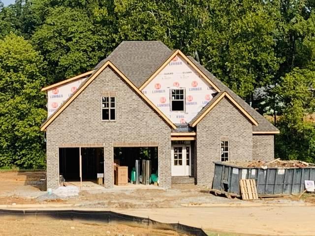 1047 Westland Creek Blvd, Knoxville, TN 37923 (#1126485) :: Venture Real Estate Services, Inc.