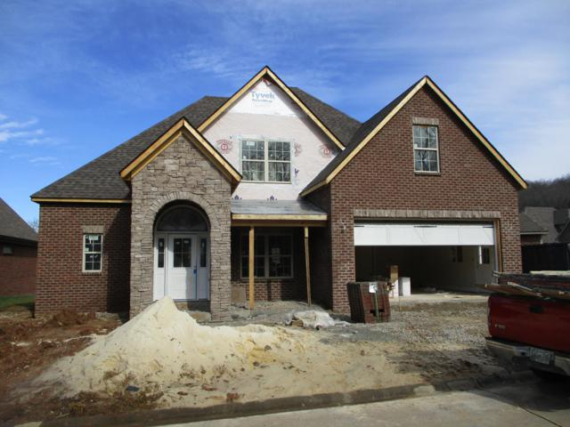 11341 Shady Slope Way, Knoxville, TN 37932 (#1063644) :: Billy Houston Group