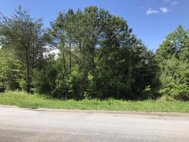 157 Pocola Way, Loudon, TN 37774 (#1000130) :: Billy Houston Group