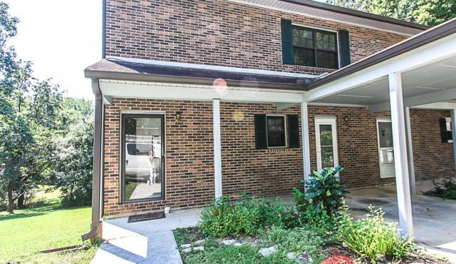 19 Chestnut Drive, Norris, TN 37828 (#1000981) :: Realty Executives Associates