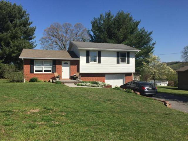 202 Forest Hills Drive, New Tazewell, TN 37825 (#1000992) :: Billy Houston Group