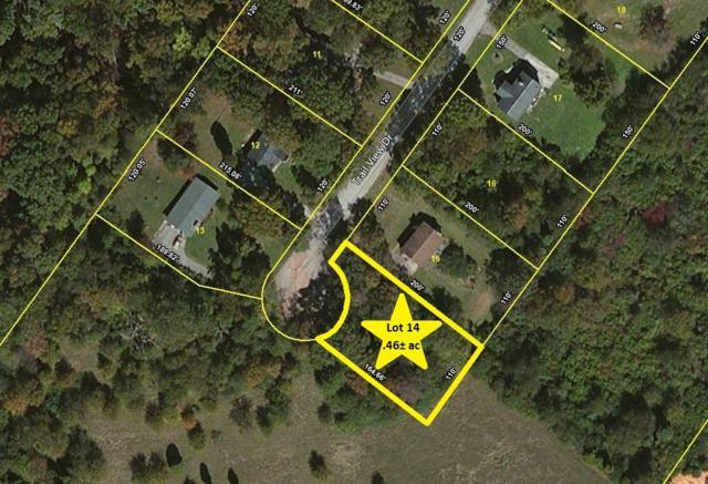 Trail View Drive, Loudon, TN 37774 (#1001713) :: Billy Houston Group