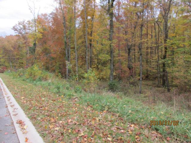 Lot 13 Eagle Ridge Rd, Rockwood, TN 37854 (#1002364) :: Billy Houston Group