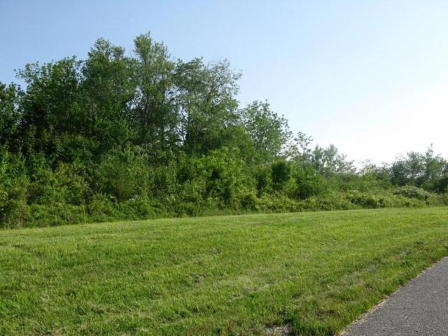 Hinch Mountain View Rd, Lot 1, Crossville, TN 38555 (#1002723) :: Billy Houston Group