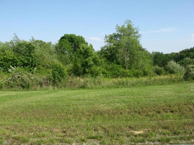 Hinch Mountain View Rd, Lot 2, Crossville, TN 38555 (#1002724) :: Billy Houston Group