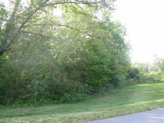 Hinch Mountain View Rd, Lot 13, Crossville, TN 38555 (#1003261) :: Billy Houston Group