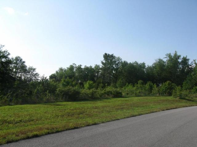 Hinch Mountain View Rd, Lot 14, Crossville, TN 38555 (#1003263) :: Billy Houston Group