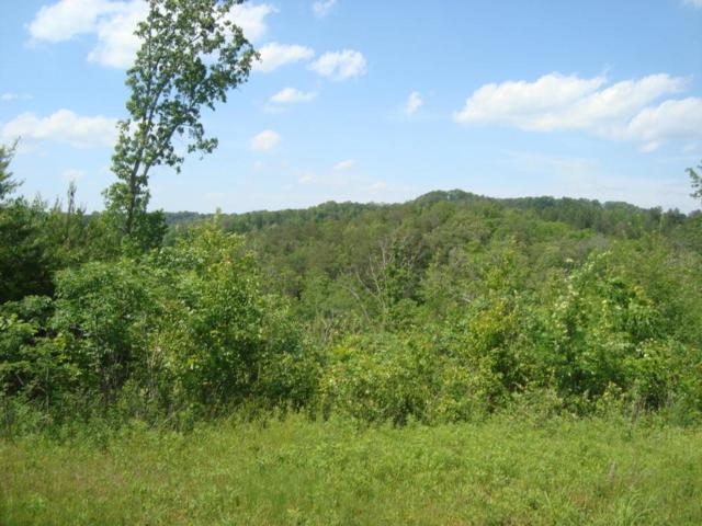 11.58 Ac Of 2853 Hwy 360, Vonore, TN 37885 (#1003591) :: Billy Houston Group