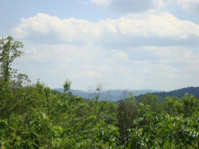 12.11 Ac Of 2853 Hwy 360, Vonore, TN 37885 (#1003594) :: Billy Houston Group