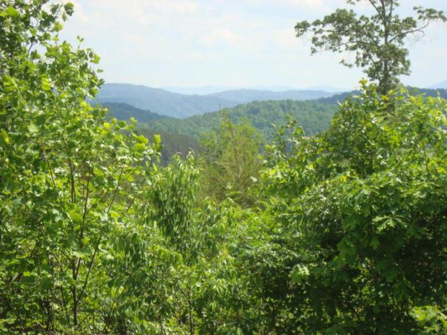 Lots 2, 3 Of 2853 Hwy 360, Vonore, TN 37885 (#1003595) :: Billy Houston Group