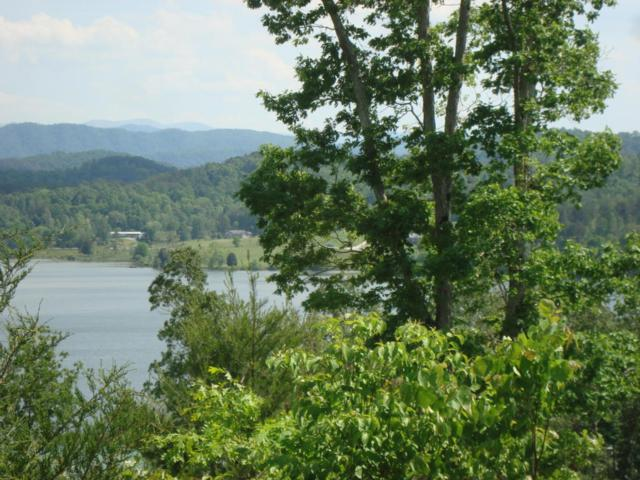 Lot 4 Of 2853 Hwy 360, Vonore, TN 37885 (#1003598) :: Billy Houston Group