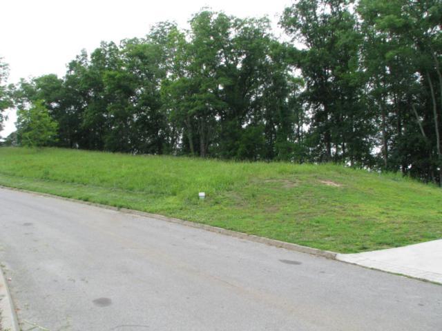 Lot 06 Lakebend Lane, Dandridge, TN 37725 (#1004471) :: Billy Houston Group