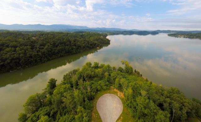 Stone Harbor, Dandridge, TN 37725 (#1005088) :: Shannon Foster Boline Group