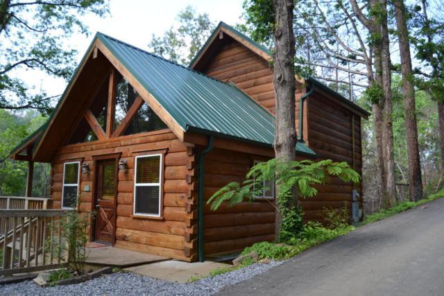 920 Oak Ridge Rd, Gatlinburg, TN 37738 (#1005189) :: SMOKY's Real Estate LLC