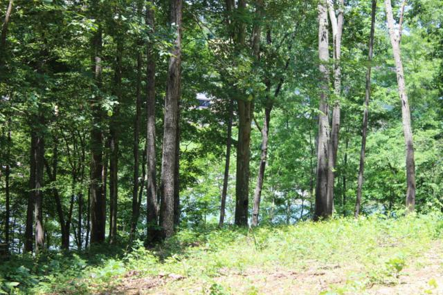 Lot 9 River Bluff Way, Sevierville, TN 37876 (#1005635) :: Billy Houston Group